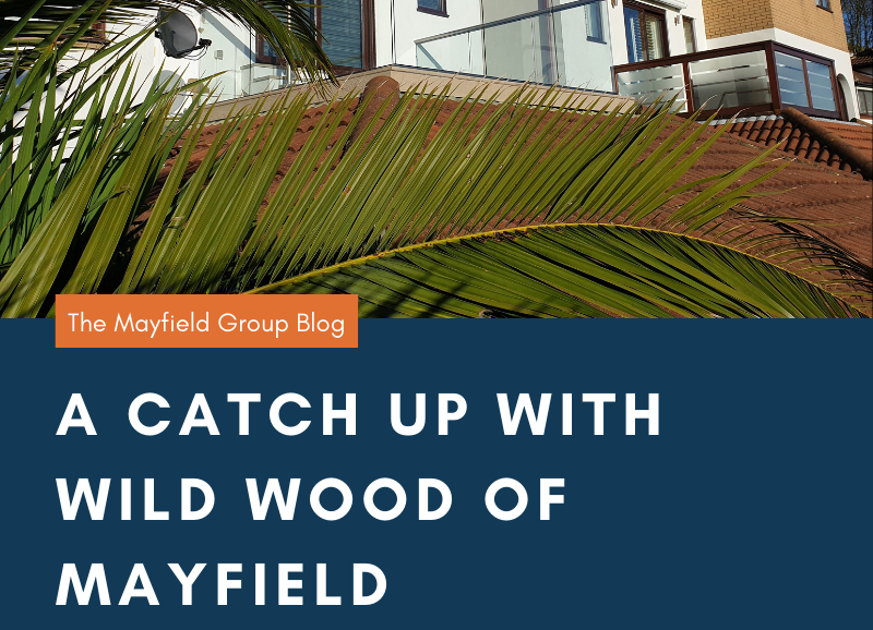 Wild Wood of Mayfield Decking in Sussex